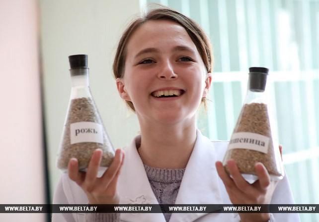 Зерно в счет госзаказа начало поступать на Гомельский комбинат хлебопродуктов