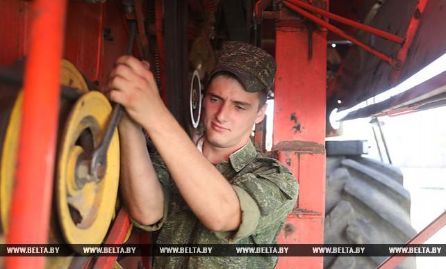 В Мстиславском районе военнослужащие помогают на уборке урожая