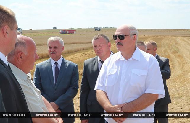 Лукашенко ознакомился с организацией уборки зерновых в Минском районе
