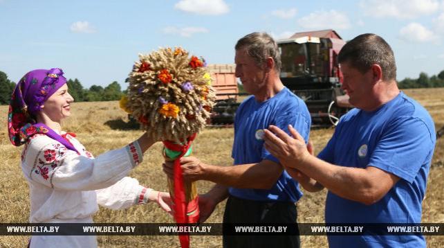 В Гродненском районе завершается уборка зерновых