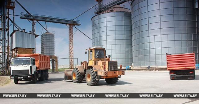 Более 68% площадей зерновых убрано в Минской области