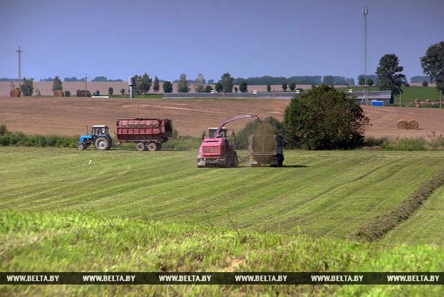 В Несвижском районе идет уборка трав третьего укоса