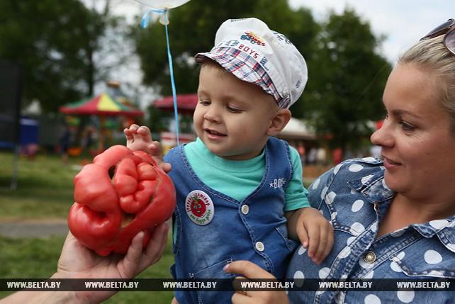 """Фестиваль """"Ивьевский помидор"""""""