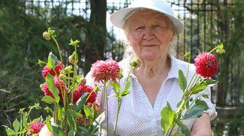 Научный сотрудник Ботанического сада Ирина Коревко 50 лет выращивает георгины
