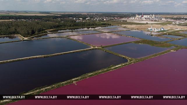 Поля фильтрации Скидельского сахарного завода
