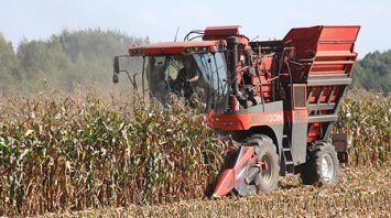 Уборка кукурузы на зерно идет в Гомельской области
