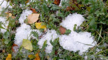 Снежный град прошел в Витебске