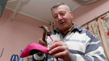 Льготы для бизнеса на селе способствуют появлению объектов обслуживания