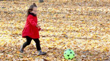 Осень в Витебске