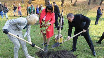 Молодые педагоги Беларуси и России посадили более 50 деревьев в Витебске