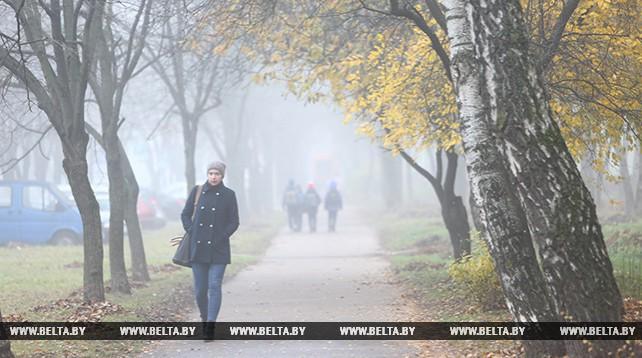 Туман в Минске