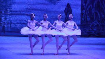"""Большой театр оперы и балета представил в Могилеве балет """"Лебединое озеро"""""""