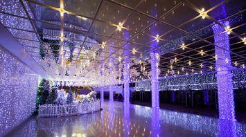 Дворец Республики украсили к Новому году