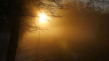 Морозное утро в Наровлянском районе
