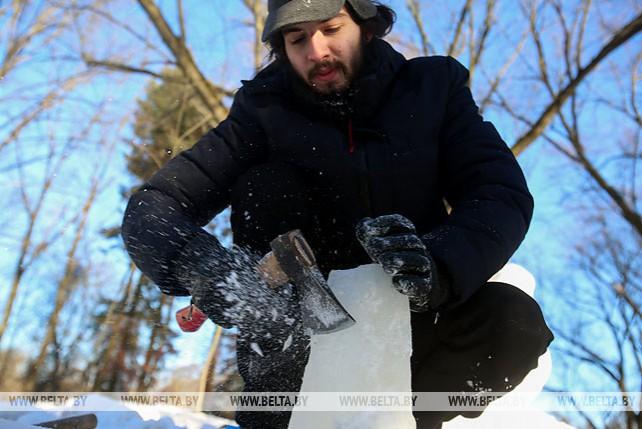 Конкурс ледовых и снежных скульптур проходит в Ботаническом саду