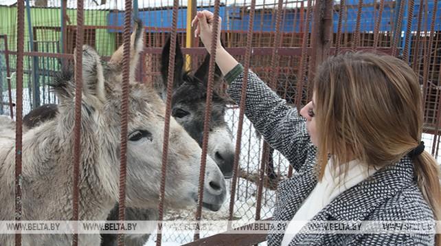 Жлобинский зоопарк в 2018 году принял около 18 тыс. посетителей