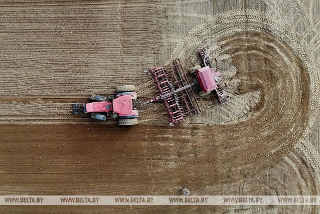 Аграрии Гродненской области приступают к весеннему севу
