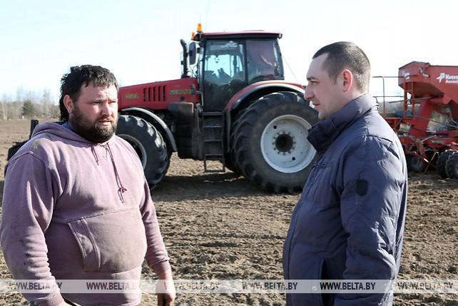 В Светлогорском районе уже засеяно более 40% площадей под яровые зерновые