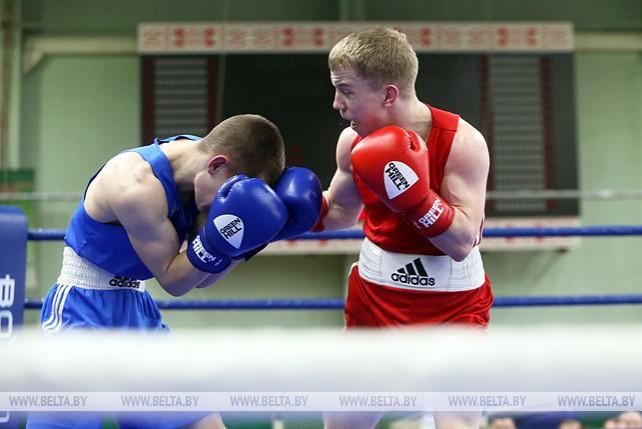 В Гомеле проходит чемпионат Беларуси по боксу