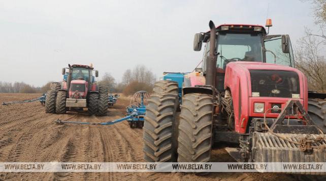 Сев зерновых идет в Могилевском районе