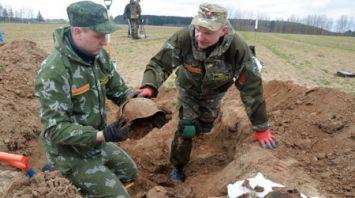 Поиск останков воинов, погибших в 1941 году, ведется в Могилевском районе
