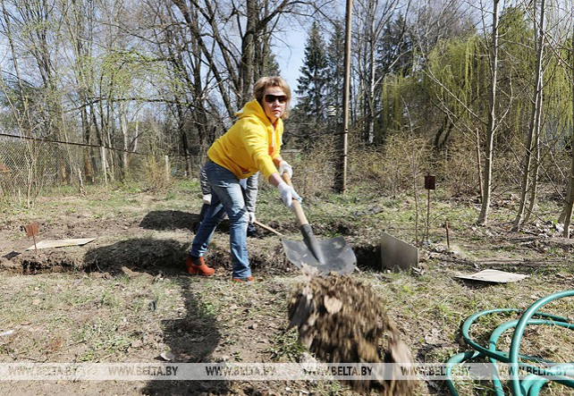 Озеленение и благоустройство стали хорошей традицией для белорусов - Щеткина