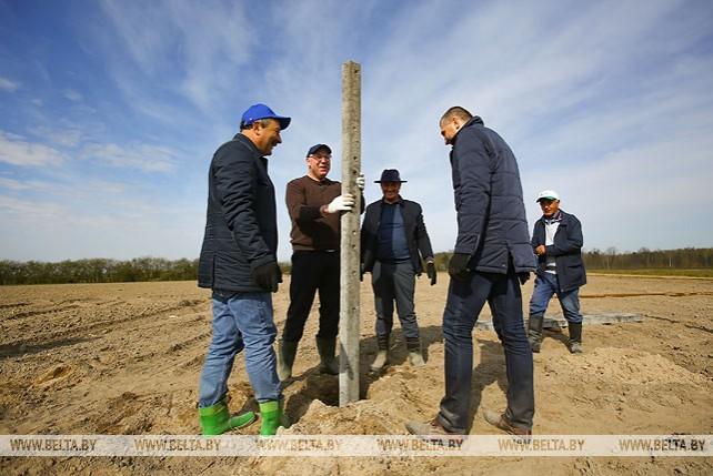 Белорусско-таджикистанский сад Дружбы заложили в Брестском районе