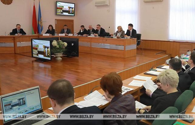 Кочанова приняла участие в заседании Гомельского горисполкома
