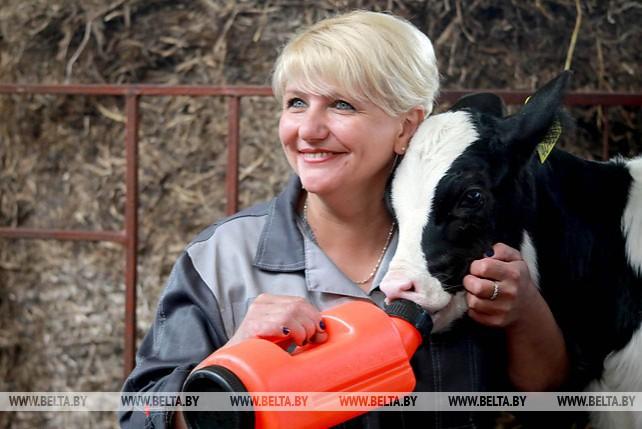 """В ОАО """"Рассвет им. К.П.Орловского"""" начал работу крупный молочно-товарный комплекс"""