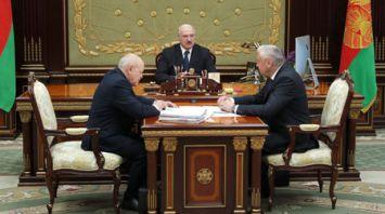 Лукашенко заслушал доклад о повышении эффективности использования лесных ресурсов