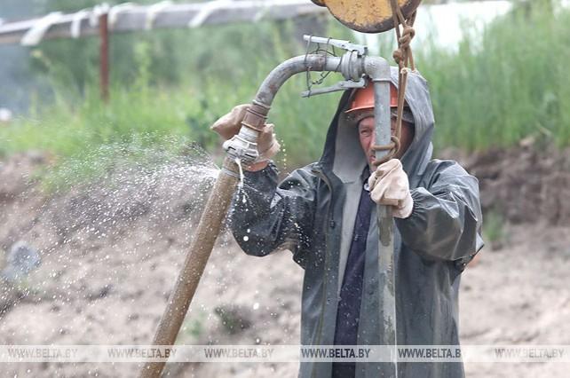 """В национальном парке """"Припятский"""" начали строительство историко-этнографического комплекса"""