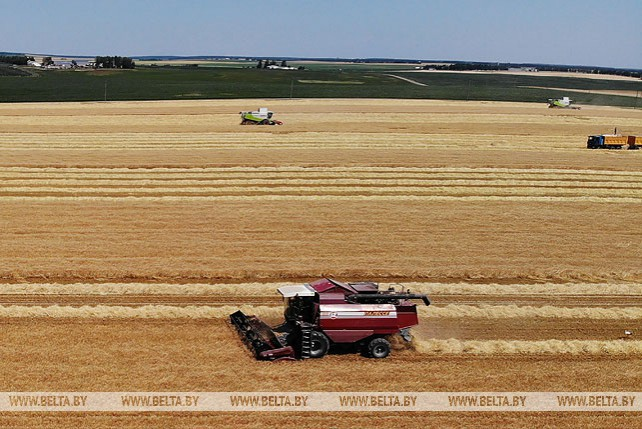 Уборка зерновых в Гродненском районе