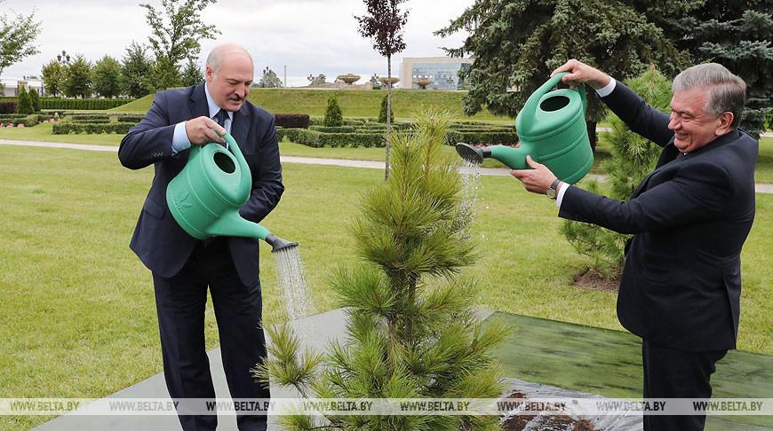 Мирзиёев посадил дерево на Аллее почетных гостей у Дворца Независимости