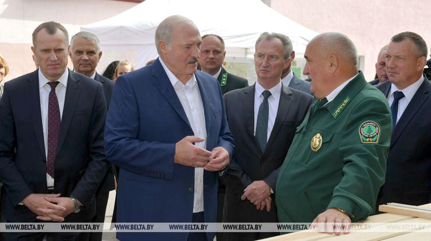 Лукашенко посетил Стародорожский опытный лесхоз