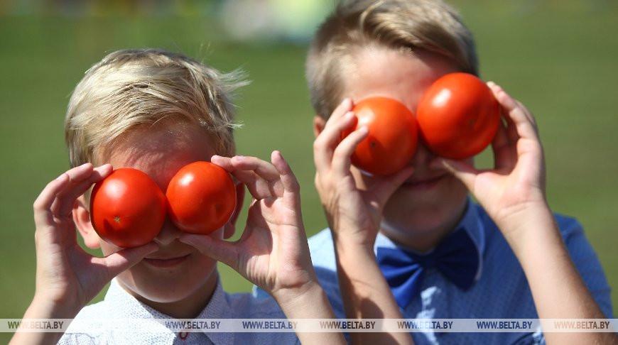 Фестиваль в честь помидора провели в Ивье