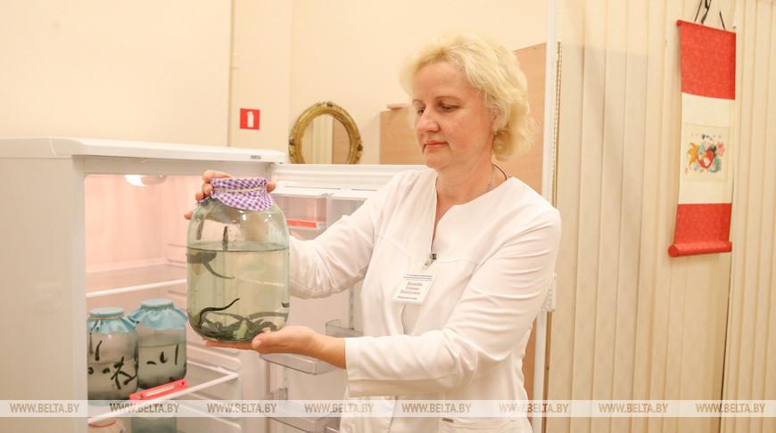 Гирудотерапию проводят в 10-й городской клинической больнице Минска