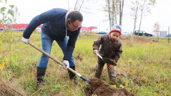 """Более 2 тыс. саженцев быстрорастущих деревьев посадили возле СЭЗ """"Могилев"""""""
