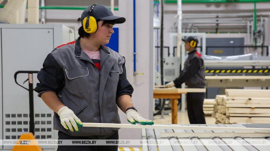 В Телеханах запустили производство пластиковых лыж