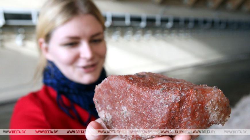 Петриковский ГОК к концу года выпустит первую партию калийных удобрений