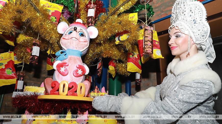 Путешествие в новогоднюю сказку устроили для детей на губернаторской елке в Могилеве