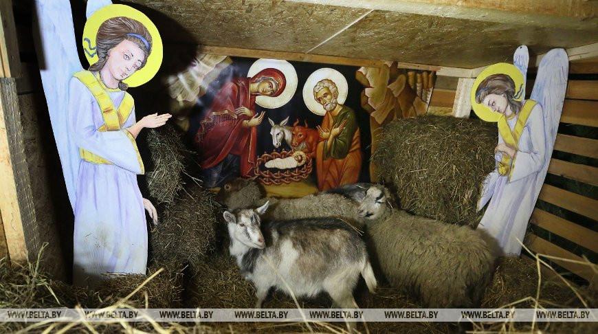 В Гродно появился живой рождественский вертеп