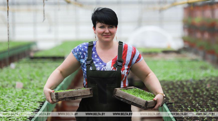 Озеленители Бреста планируют начать высадку цветов раньше обычного