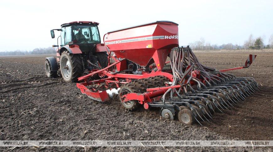 В Калинковичском районе приступили к севу зерновых