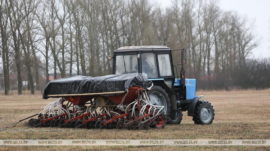 Весенние полевые работы идут в Жабинковском районе