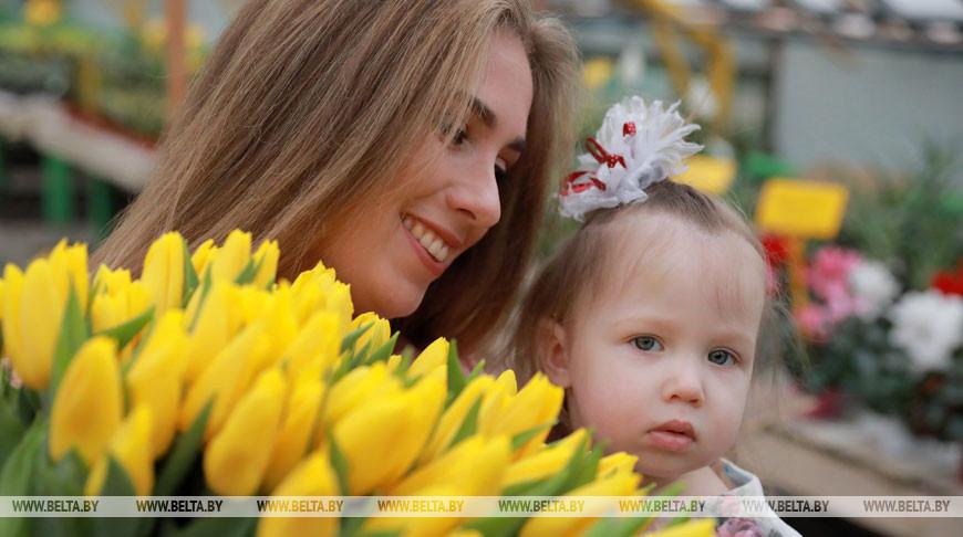 """""""Могилевзеленстрой"""" готовит к 8 Марта более 20 тыс. цветов"""