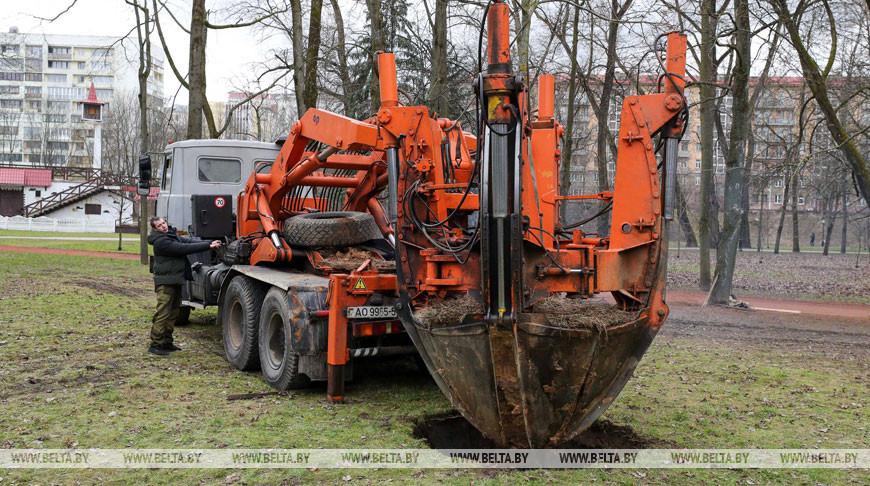 В парке Горького с помощью спецмашины посадили дерево