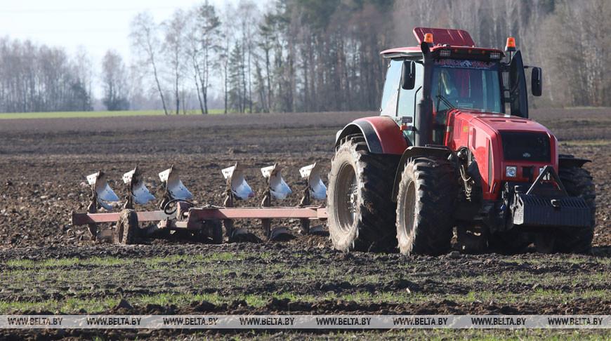 Сев зерновых идет в Речицком районе