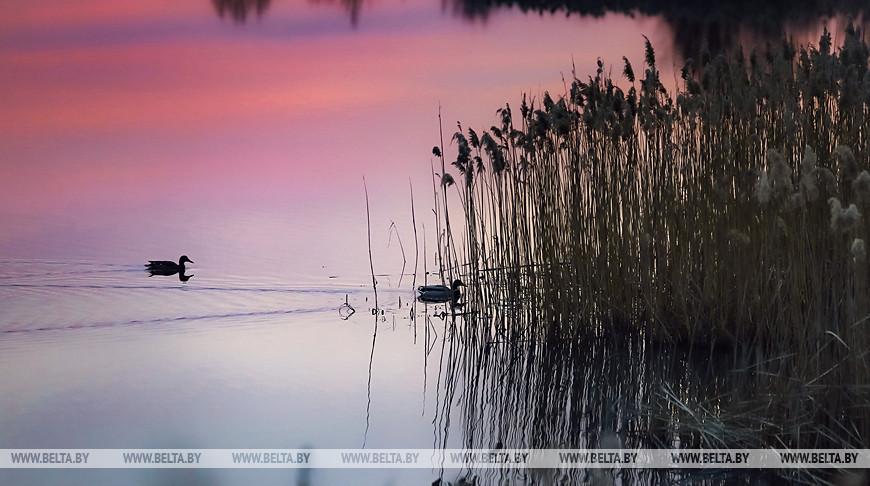 Вечер на реке Мухавец