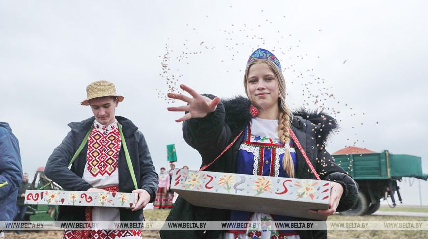 """В СПК """"Свислочь"""" перед началом сева провели традиционный обряд первой борозды"""