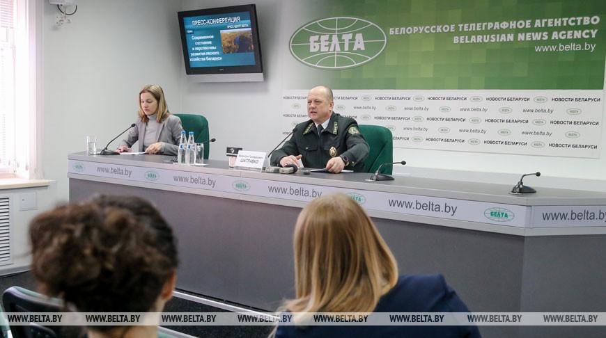 Пресс-конференция о развитии лесного хозяйства Беларуси прошла в БЕЛТА